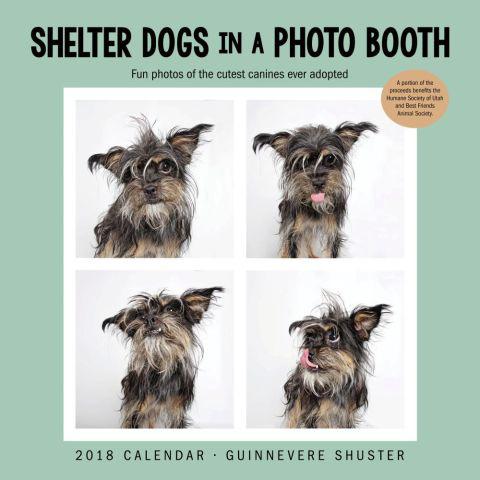 2018 Dog Calendar - Shelter Dogs in a Photo Booth Calendar