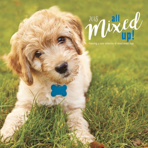 2018 Dog Calendar - All Mixed Up, Mutts, Mixed Breed Dogs