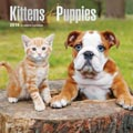 2018 Dog Calendar Kittens and Puppies