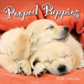 2018 Dog Calendar Pooped Puppies