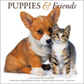 2018 Dog Calendar Puppies and Friends