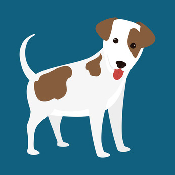 White Brown Dog Clip Art Pictures Of Dogs