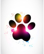 Colorful animal dog paw print