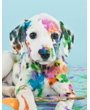 Picture of Colorful cute Dalmatian puppy dog, Easter egg style