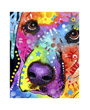 Dog art print, colorful labrador close up, Dean Russo