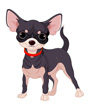 Cute Chihuahua clip art dog
