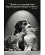 Dog Poster with Kittens, Quote by George Elliot