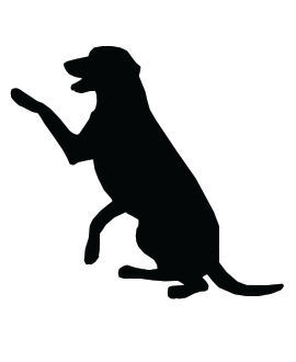 Dog Clip Art, Large Retriever Dog Sits with Paw Raised