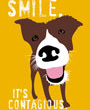Dog art print, motivational smiling dog