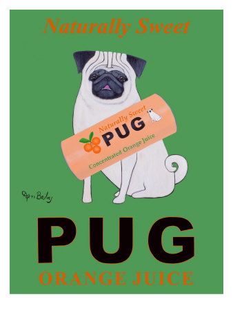 Dog poster, Pug Orange Juice poster by Ken Bailey