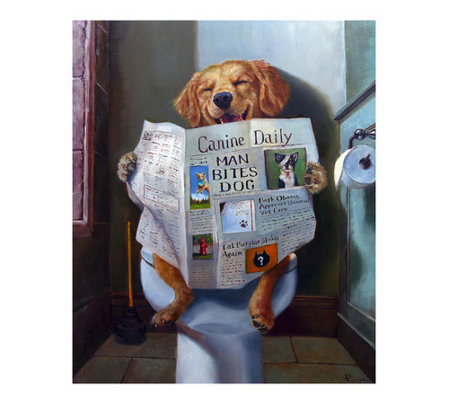 Dog Gone Funny by Lucia Heffernan, Reading paper on the toilet