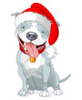Clip Art of Pit Bull dog wearing a Santa hat