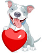 Clipart of pitbull dog with Valentine heart