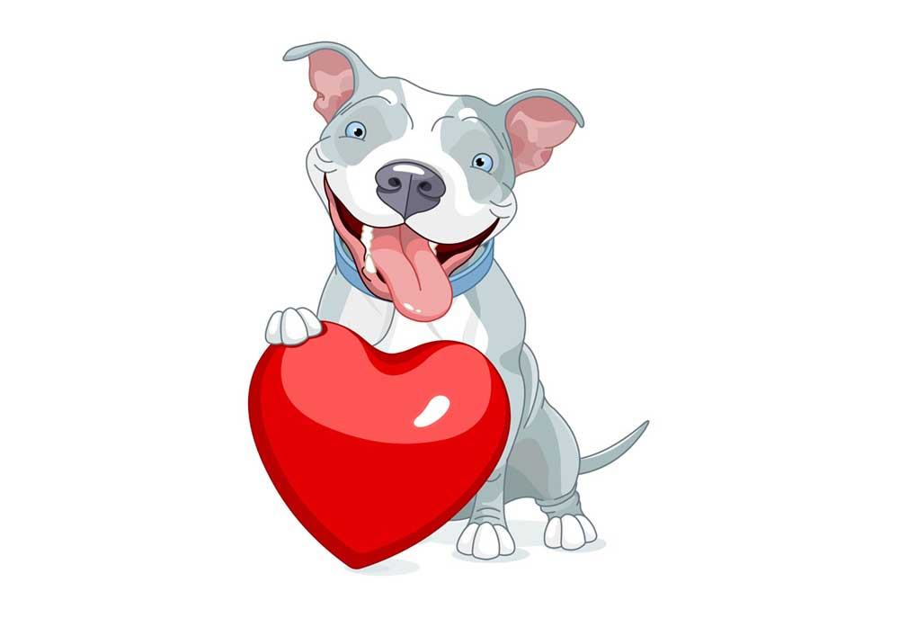 Love Pitbull dogs clipart, pit bull dog with Valentine heart