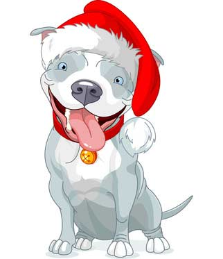 Pictures Of Dogs For Christmas Season Dog Pictures